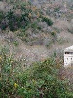 Image for CENTRAL PELION